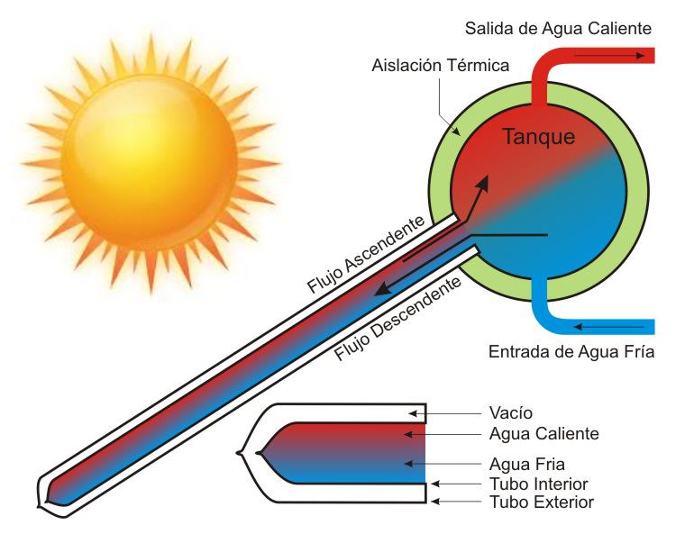 Esquema de Funcionamiento del Calefón Solar por Tubos de Vacío (Foto 3)